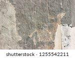 plaster wall texture... | Shutterstock . vector #1255542211