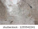 plaster wall texture... | Shutterstock . vector #1255542241