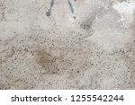 plaster wall texture... | Shutterstock . vector #1255542244