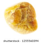 macro photography of natural... | Shutterstock . vector #1255560394