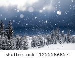 christmas and new year... | Shutterstock . vector #1255586857