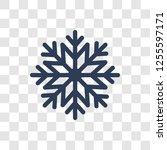 trendy christmas snowflake logo ... | Shutterstock .eps vector #1255597171