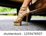 womans legs in high heels....   Shutterstock . vector #1255678507