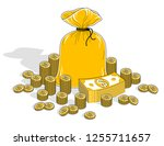 cash riches and wealth  money... | Shutterstock .eps vector #1255711657