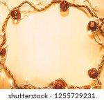 christmas decorative frame | Shutterstock . vector #1255729231