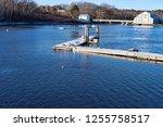 a lone duck swimming near... | Shutterstock . vector #1255758517