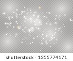 dust white. white sparks and... | Shutterstock .eps vector #1255774171
