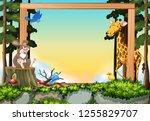 wild animals in forest frame... | Shutterstock .eps vector #1255829707
