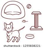 cute cartoon kitten and... | Shutterstock .eps vector #1255838221