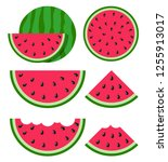 flat icon slice of watermelon.... | Shutterstock .eps vector #1255913017