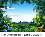 a jungle theme template... | Shutterstock .eps vector #1255926394