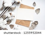 eucalyptus leaves and cotton... | Shutterstock . vector #1255952044