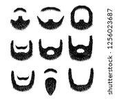 realistic beard set  isolated... | Shutterstock . vector #1256023687