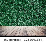 old wood plank with abstract... | Shutterstock . vector #1256041864
