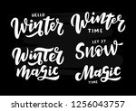 winter and magic lettering... | Shutterstock .eps vector #1256043757