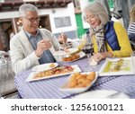 attractive senior couple eating ... | Shutterstock . vector #1256100121