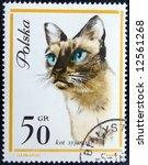 old postage stamp   Shutterstock . vector #12561268