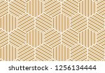 abstract geometric pattern with ... | Shutterstock . vector #1256134444
