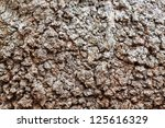 background texture from rutted tree bark - stock photo
