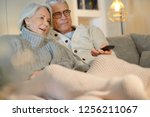 senior couple at home relaxing ... | Shutterstock . vector #1256211067