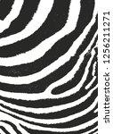 distressed overlay texture of...   Shutterstock .eps vector #1256211271