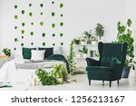 emerald green comfortable... | Shutterstock . vector #1256213167