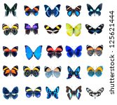 Stock photo collection of butterflies in high definition on a white background 125621444