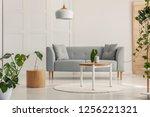 green leaf in white vase on... | Shutterstock . vector #1256221321