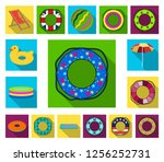 multicolored swimming circle... | Shutterstock .eps vector #1256252731
