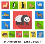 different animals flat icons in ... | Shutterstock .eps vector #1256254084