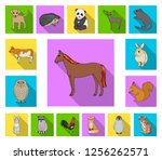 realistic animals flat icons in ... | Shutterstock .eps vector #1256262571