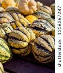 sweet dumpling squash    small...   Shutterstock . vector #1256267287