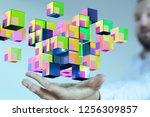 network data in hand | Shutterstock . vector #1256309857