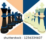 chess pieces in black and white.... | Shutterstock .eps vector #1256334607