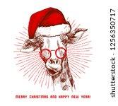 a hipster christmas giraffe.... | Shutterstock .eps vector #1256350717