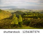 panoramic view point... | Shutterstock . vector #1256387374