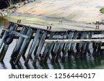 boat dock in the summer | Shutterstock . vector #1256444017