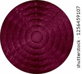 concentric burgundy circles in... | Shutterstock .eps vector #1256459107