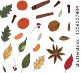vector hand drawn set of spices ... | Shutterstock .eps vector #1256527804