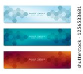 set of vector banners and... | Shutterstock .eps vector #1256533681