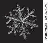snowflake isolated on black... | Shutterstock .eps vector #1256574691