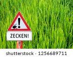 warning sign attention ticks | Shutterstock . vector #1256689711