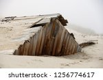 nature reclaims an old building ... | Shutterstock . vector #1256774617