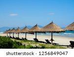 sunbeds under a straw umbrella...   Shutterstock . vector #1256849047