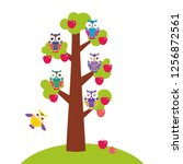 set bright colorful owls on the ... | Shutterstock . vector #1256872561