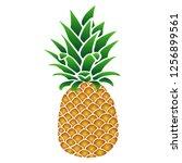 sweet yellow orange pineapple... | Shutterstock .eps vector #1256899561