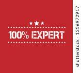100  expert emblem  label ... | Shutterstock .eps vector #1256972917