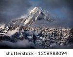 beautiful landscape of himalaya ... | Shutterstock . vector #1256988094