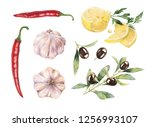 hand drawn raw food... | Shutterstock . vector #1256993107