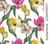 vector tulip engraved ink art.... | Shutterstock .eps vector #1256993917